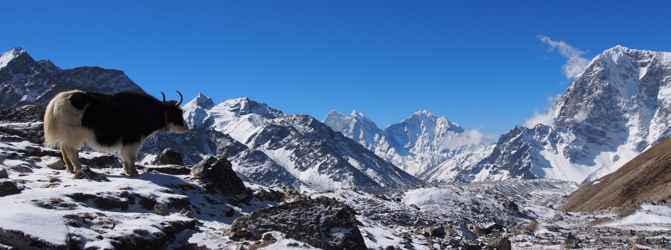 Winter Trek in Nepal